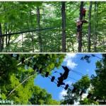 Horseshoe resort Treetop Trekking Review in Barrie Ontario Travel